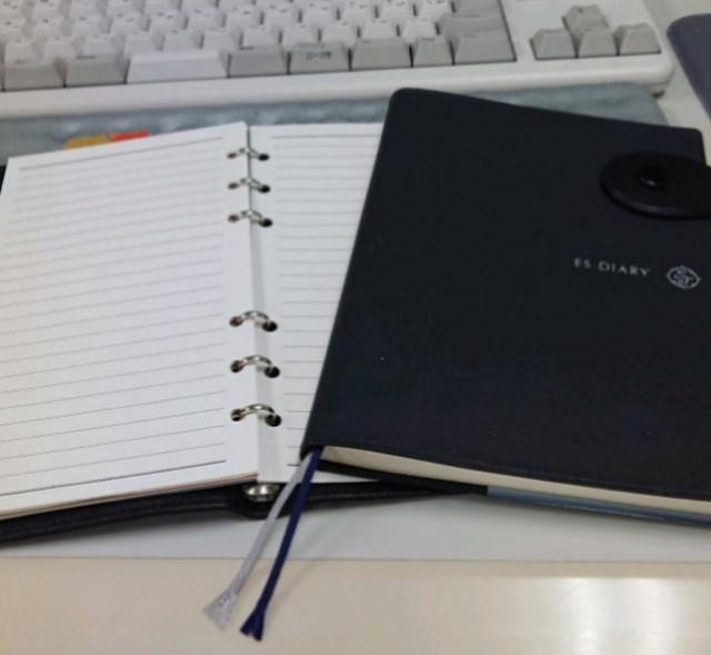 2019年の手帳はESダイアリーとシステム手帳の組み合わせで